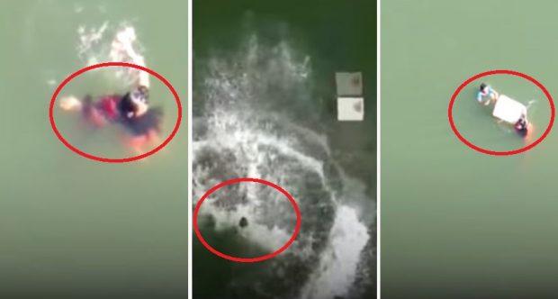 GJESTI HEROIK/ Burri hidhet nga ura 21 metra e lartë për të shpëtuar një… (VIDEO)