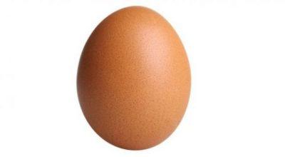 E FRESKËT APO JO? Si të dallojmë vezën në supermarkete