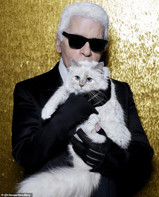 """""""ISHTE NJË NJERI I TMERRSHËM""""/ Aktorja bën deklaratën e rëndë ndaj dizajnuesit Karl Lagerfeld"""