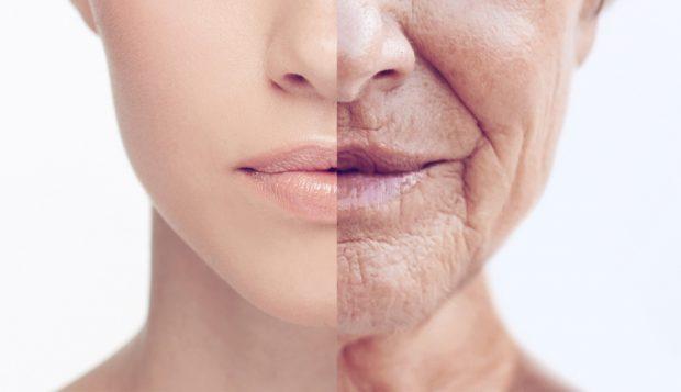 E HABITSHME/ Ja çfarë ndodh me trupin tonë teksa plakemi