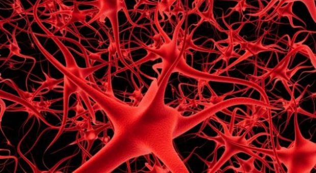 MË NË FUND/ Zbulohet ilaçi që mbron nga humbja e kujtesës në pleqëri