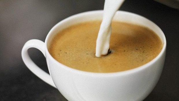 STUDIMI I FUNDIT/ Vendosja e qumështit në kafe ose çaj lufton kancerin