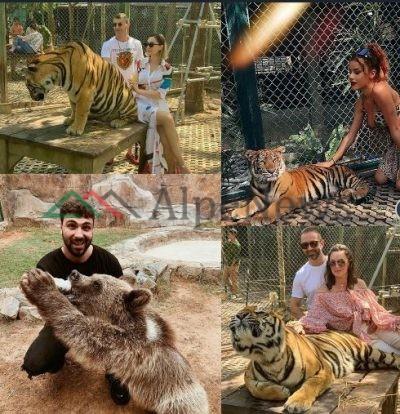 """""""KRIJESAT E MREKULLUESHME""""/ Kur VIP-at shqiptar """"fiksohen"""" pas fotove me… kafshë të egra (FOTO)"""