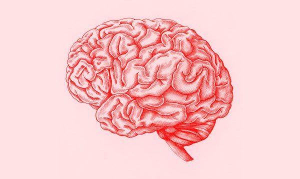 NGA ECJA TEK VIZATIMI/ Pesë teknika për të përmirësuar kujtesën