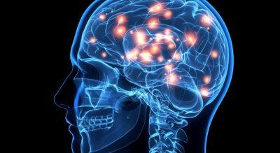 STUDIMI/ Ja çfarë ndodh me trurin e njeriut para se të vdesë