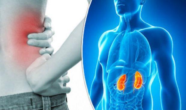 BËNI KUJDES/ Këto 7 shenja tregojnë që veshkat tuaja kanë probleme