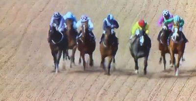 PAMJE EPIKE/ Shihni momentin kur kuajt i ndërpresin çastin intim çiftit (VIDEO)