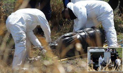 ISHIN TË PËRFSHIRË NË…/ Gjenden 19 trupa të therur në çanta në kanalin e ujërave të zeza