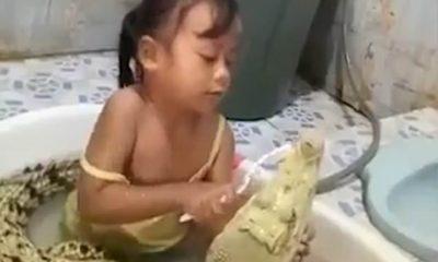 """VIDEOJA QË TRONDITI BOTËN/ Vogëlushja lan dhëmbët e krokodilit pa iu """"dredhur qerpiku"""""""