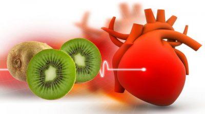 STUDIMI I FUNDIT/ Pse njerëzit që vuajnë nga tensioni i lartë i gjakut duhet të hanë 3 kivi në ditë