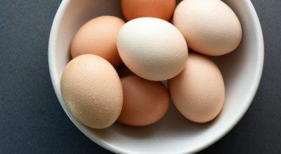 SHKENCA/ Ngrënia e vezëve për mëngjes shton rritjen e funksionit të trurit
