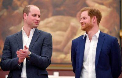 MERR FUND SHERRI MIDIS TYRE/ Princ William dhe Harry kthehen si më parë