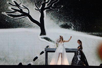"""""""NA VRANË PERFORMANCËN""""/ Artistja e famshme në Amerikë bën """"për 2 lek"""" Eurosong-un (FOTO)"""