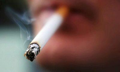 SHKENCTARËT JAPIN ALARMIN/ Pirja e duhanit mund të zvogëlojë madhësinë e penisit