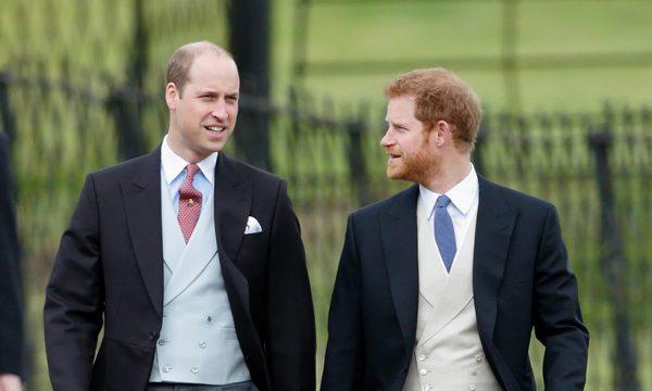 ME KËTO FOTO TË PUBLIKUARA/ Princ Harry dhe Princ William i japin fund thashethemeve për marrëdhënien e tyre