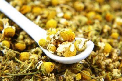PËR QETËSINË SHPIRTËRORE/ Si ta përdorim çajin kamomil për stomakun dhe lëkurën