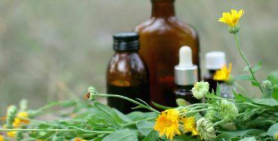 PROBLEME ME TRETJEN DHE FRYMËMARRJEN/ Ja 5 bimët çudibërëse që do t'ju ndihmojnë