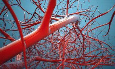 NGA MPIRJA DERI TEK ËNJTJA/ Simptomat që tregojnë se keni probleme me qarkullimin e gjakut