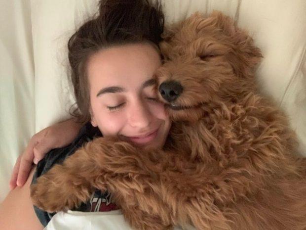 SHKENCA E THOTË/ Nëse keni një qen në shtëpi, zemra juaj është më e shëndetshme