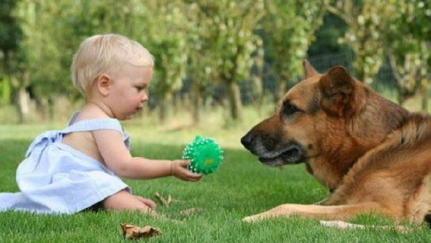 E RËNDËSISHME TA DINI/ Fëmijët që rriten me kafshë shtëpiake kanë më shumë përfitime shëndetësore