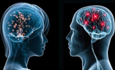 DUHET TA DINI/ Ja çfarë veprimi të bëni që ta mbani trurin tuaj të ri dhe në formë