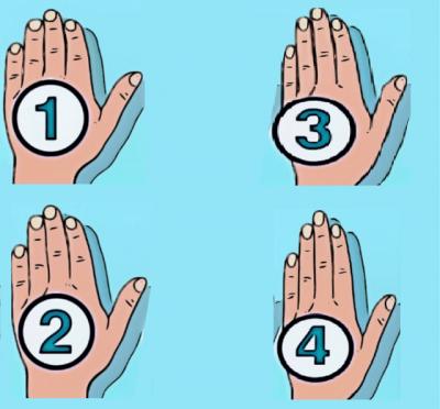 MËSOJENI TANI/ Zbuloni çfarë tregon forma e dorës për personalitetin tënd
