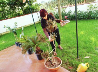 NË NATYRË ME IRMA LIBOHOVËN/ Këngëtarja tregon kujdesin e rrallë për lulet