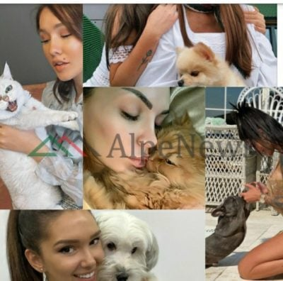 DASHURIA PËR KAFSHËT/ Nga macet, qentë e deri tek kaviet, VIP-at shqiptarë që i kanë pjesë të jetës (FOTOT)